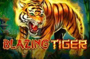 blazing tiger slot