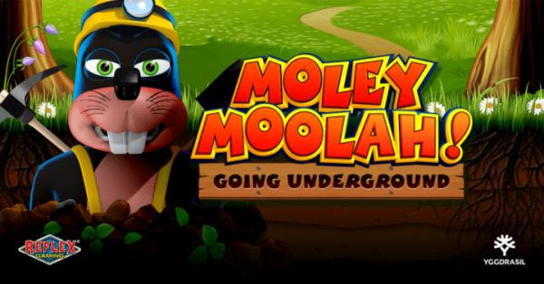YGG-Moley-Moolah