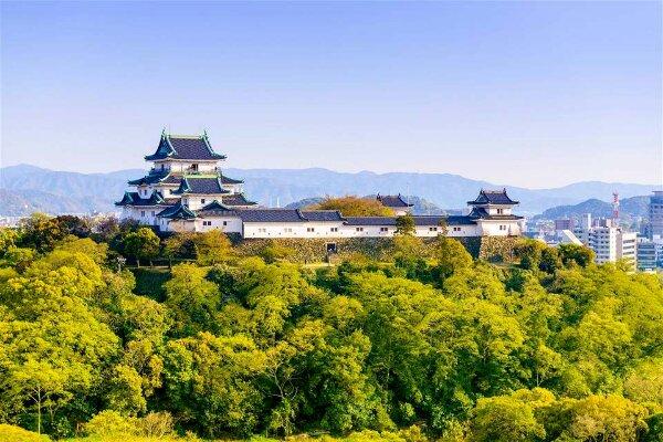 Вакаяма опубликовала собственную Политику интегрированного курорта